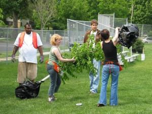 city-trees-pick-up-2007-007