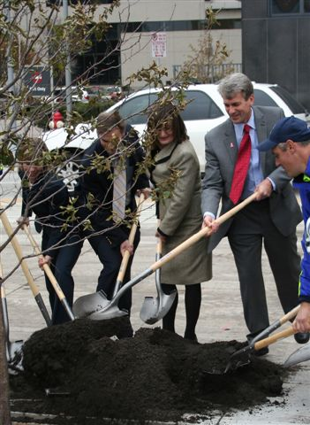 Planting one of 179 new trees on Marquette and Second avenues.